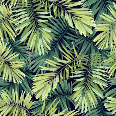 Fotomural Fondo verde claro con plantas tropicales. Vector sin fisuras patrón exótico con hojas de palma de fénix.