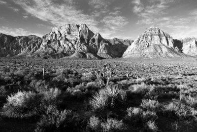 Fotomural Formaciones de roca geológica Red Rock Canyon Las Vegas EE.UU.