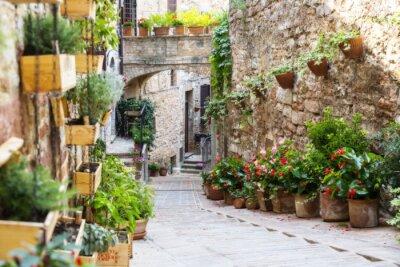 Fotomural Fotografía con efecto Orton de una calle decorada con plantas y flores en la histórica ciudad italiana de Spello (Umbría, Italia)