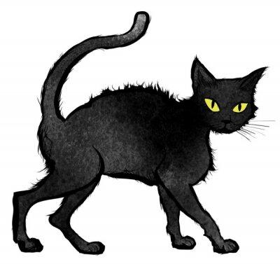 Fotomural Gato negro que camina y que mira la cámara
