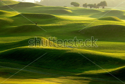 Fotomural golf place with nice green