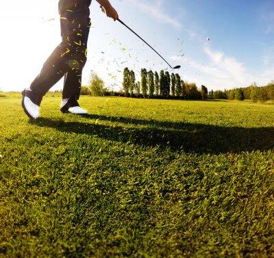 Fotomural Golf swing en el campo. Golfer realiza un tiro de golf