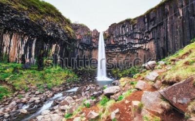 Fotomural Gran vista de la cascada de Svartifoss. Escena dramática y pintoresca. Atracción turística popular. Islandia, Europa
