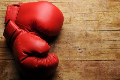 Fotomural Guantes de boxeo ¿En serio?