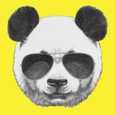 Fotomural Hand drawn portrait of Panda with sunglasses. Vector isolated elements.
