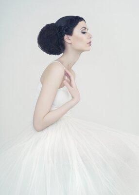 Fotomural Hermosa bailarina