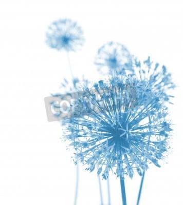 Fotomural Hermosa flores azules / composición abstracta en el fondo blanco