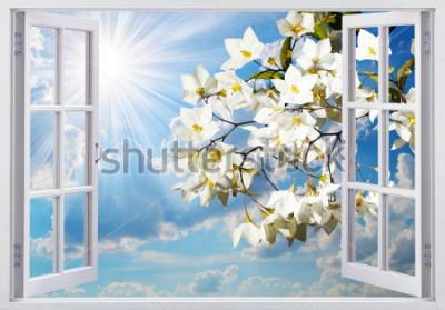 Fotomural Hermosa vista desde la ventana.