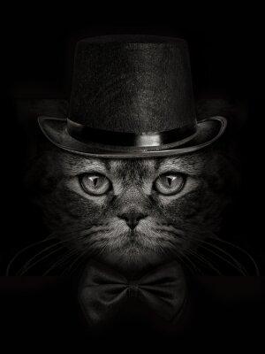 Fotomural Hocico oscuro gato close-up en un sombrero y corbata de la mariposa