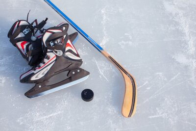 Fotomural Hockey sobre hielo.