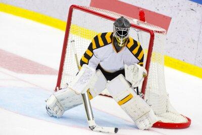 Fotomural Hockey sobre hielo Portero