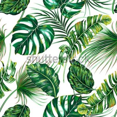 Fotomural Hojas de palmeras tropicales, monstera, vector de hoja de selva sin fisuras de fondo floral verano