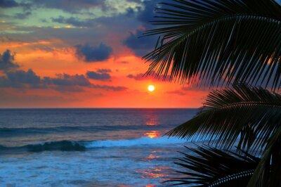 Fotomural hojas hermosa puesta de sol de mar y palmeras