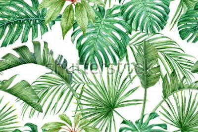 Fotomural Hojas tropicales Monstera, strelitzia, palmeras. Acuarela de patrones sin fisuras.