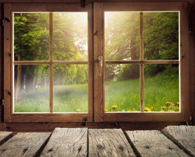 Fotomural Holzhütte mit Ausblick auf eine Waldlichtung en Frühling / Frühsommer bei Sonnenschein