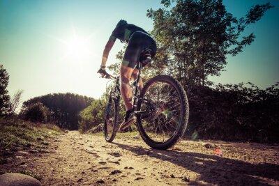 Fotomural Hombre montado en un camino sucio en una bicicleta de montaña