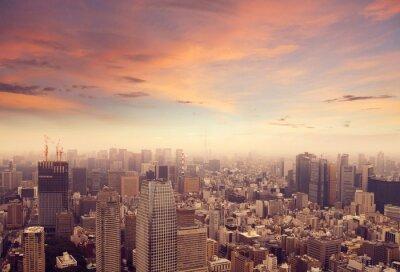 Fotomural Horizonte de Tokio