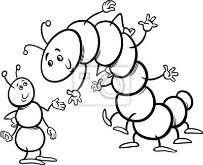 Hormiga Y Página Para Colorear Oruga Fotomural Fotomurales Milpiés