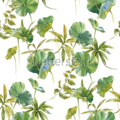 Fotomural Ilustración acuarela de hoja, patrón transparente sobre fondo blanco