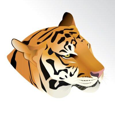 Fotomural Ilustración vectorial de cabeza de tigre retrato aislado sobre fondo blanco.