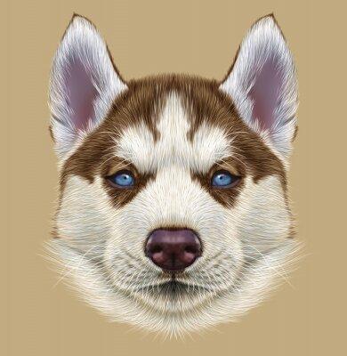 Fotomural Ilustrativo Retrato de Husky Puppy. Retrato lindo del perro bicolor rojo de cobre joven con los ojos azules pálidos.
