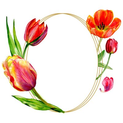 Fotomural Increíble flor de tulipán rojo con hoja verde. Conjunto de ilustración de fondo acuarela. Marco borde ornamento redondo.