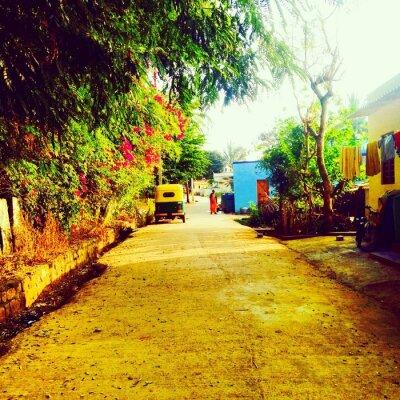 Fotomural India
