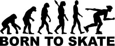 Fotomural Inline Skating Evolution