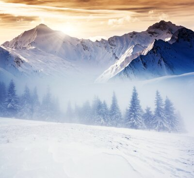Fotomural invierno
