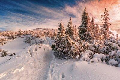 Fotomural Invierno puesta de sol en las montañas Beskids