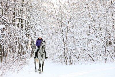 Fotomural Jinete en caballo en el borde del bosque cubierto de nieve en invierno