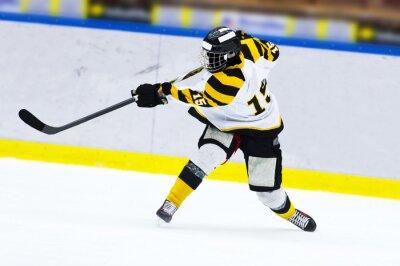 Fotomural Jugador de hockey sobre hielo - tiro de la palmada