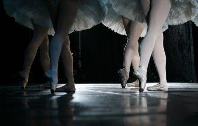 Fotomural La bailarina