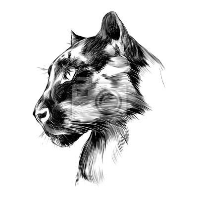 La cabeza es negro perfil de panther mirando en la distancia ...