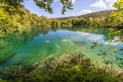 Fotomural La naturaleza virgen de Plitvice lagos del parque nacional, Croacia