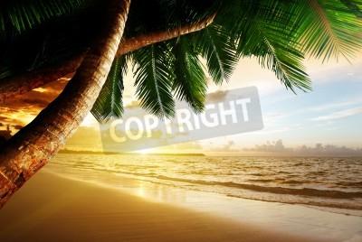 Fotomural la salida del sol en la playa del Caribe