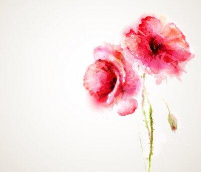 Fotomural Las dos flores de amapolas rojas. Saludo-tarjeta.