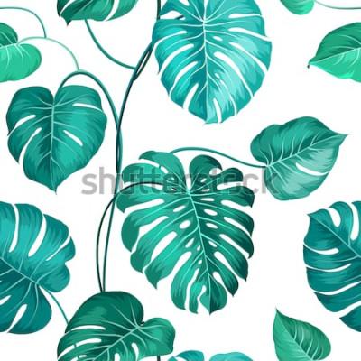 Fotomural Las hojas de palma tópicas sobre blanco, sin patrón. Ilustración vectorial