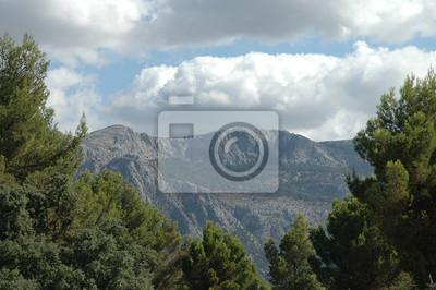 Fotomural Las montañas de Mallorca