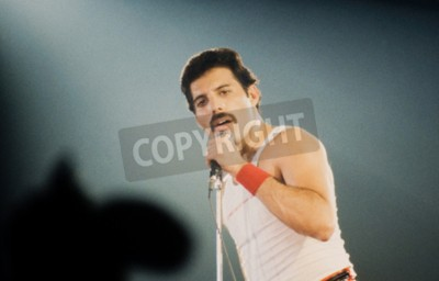 Fotomural LEIDEN, PAÍSES BAJOS - 27 DE NOVIEMBRE DE 1980: Freddy Mercury cantante de la banda británica Queen durante un concierto en el Groenoordhallen en Leiden en los Países Bajos