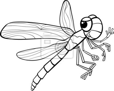 Libélula página para colorear de insectos fotomural • fotomurales ...