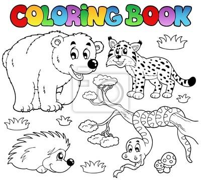 Libro de colorante con los animales del bosque 3 fotomural ...
