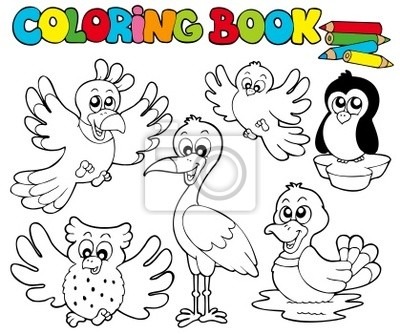 Libro para colorear con los pájaros lindos 1 fotomural • fotomurales ...