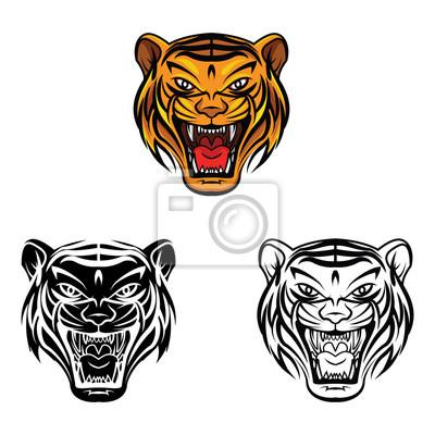 Libro Para Colorear La Cara Del Tigre Personaje De Dibujos Animados