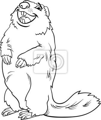 Libro para colorear marmota de dibujos animados de animales ...
