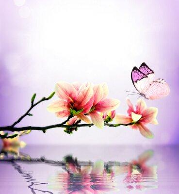 Fotomural Magnolia mariposa y de la flor
