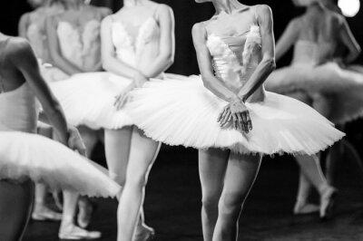 Fotomural Manos de bailarinas. Manos de bailarinas. Declaración de ballet. Grandes bailarinas. Bailarinas en el movimiento.