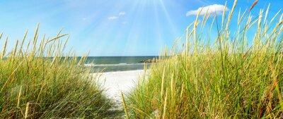 Fotomural Mar Báltico - dunas y mar