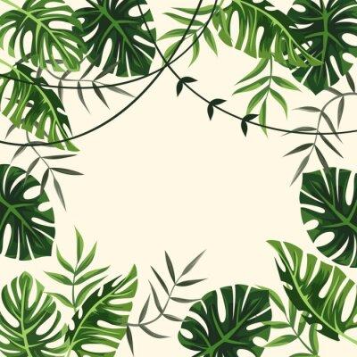 Fotomural marco tropical. fondo. follaje. ilustración vectorial