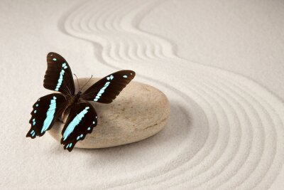 Fotomural Mariposa zen